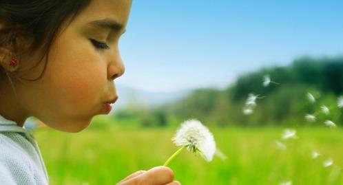 homopathy allergy treatment