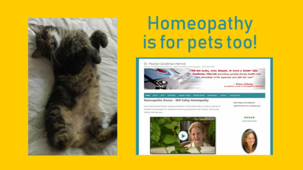Homeopathy is for Pets Too?